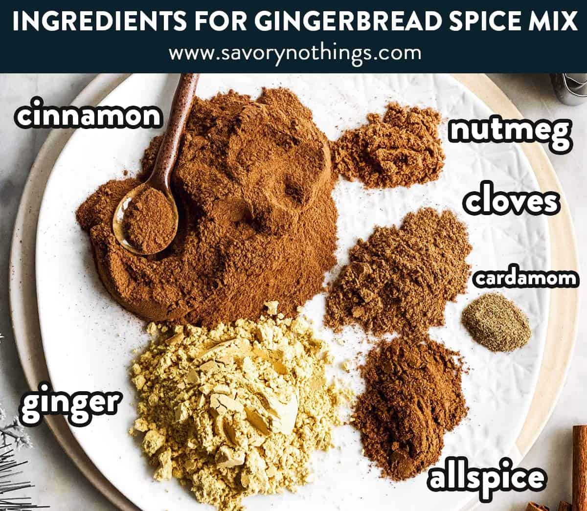 ingredients for gingerbread spice mix with text labels