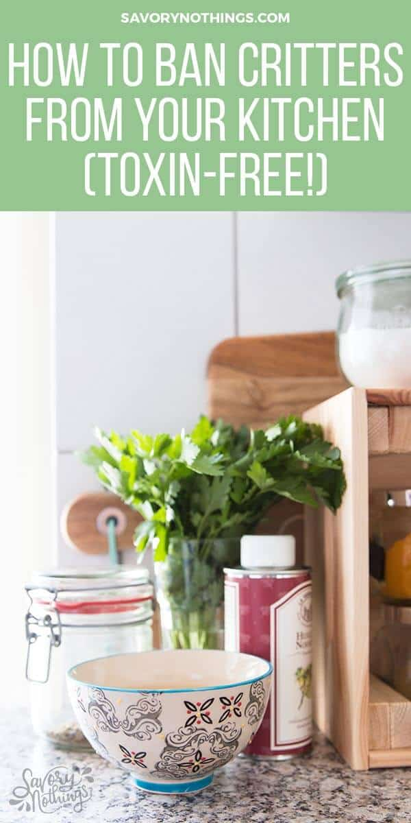 We all hate having bugs and insects in our kitchens and around our food, right?! These are 5 clever NON-TOXIC (!!) ways to keep critters out of the kitchen during summer (or anytime of the year really!). Must try number 4 ASAP!