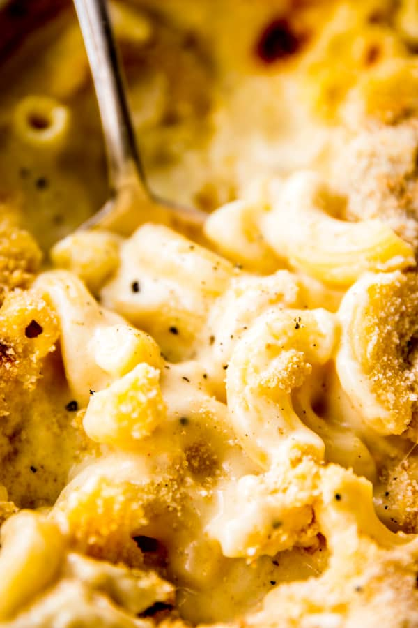 Baked Mac and Cheese in Creamy Homemade Sauce | Savory ...