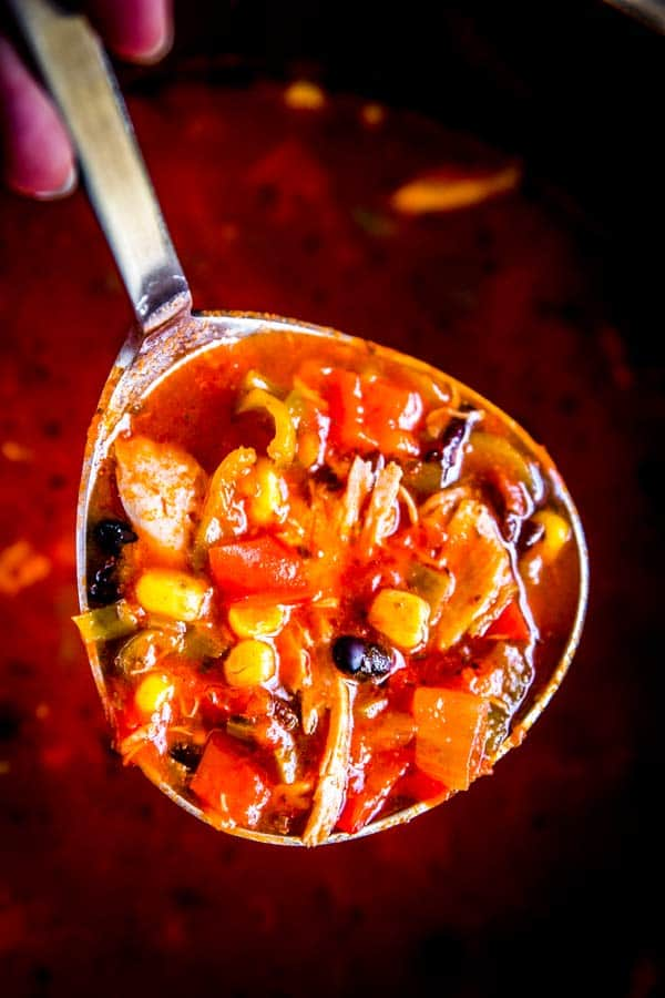 a spoonful of instant pot chicken tortilla soup