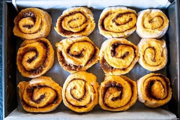 no knead pumpkin cinnamon rolls ready for baking