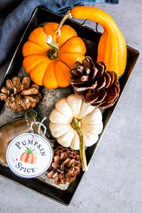 steel platter with pumpkins and a jar of pumpkin spice mix