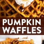 These simple homemade pumpkin waffles definitely need to happen in your waffle maker this autumn! The recipe makes a quick batter from scratch for an easy fall breakfast. Bake to crispy and fluffy perfection in your waffle iron, then load them with your favorite healthy toppings for breakfast (or ice cream for dessert!). The best! | #waffles #breakfast #fall #pumpkin #recipe #easyrecipes #breakfastrecipes #brunch #fallrecipes #pumpkinrecipes #halloween #thanksgiving #backtoschool #autumn