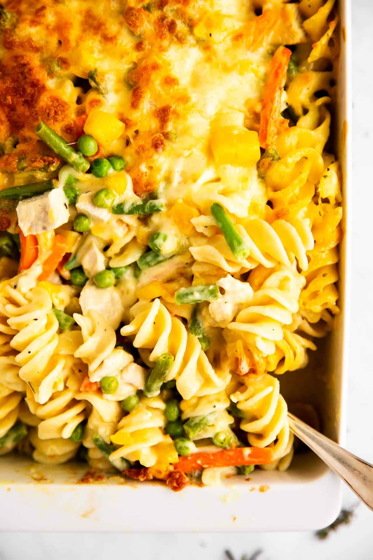 close up photo of a white casserole dish with turkey noodle casserole
