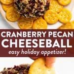 Cranberry Pecan Cheeseball Pin 3