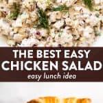 Chicken Salad Image Pin