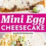 Mini Egg Cheesecake Image Pin