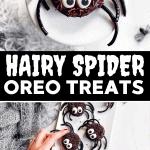 Spider Oreo Pin