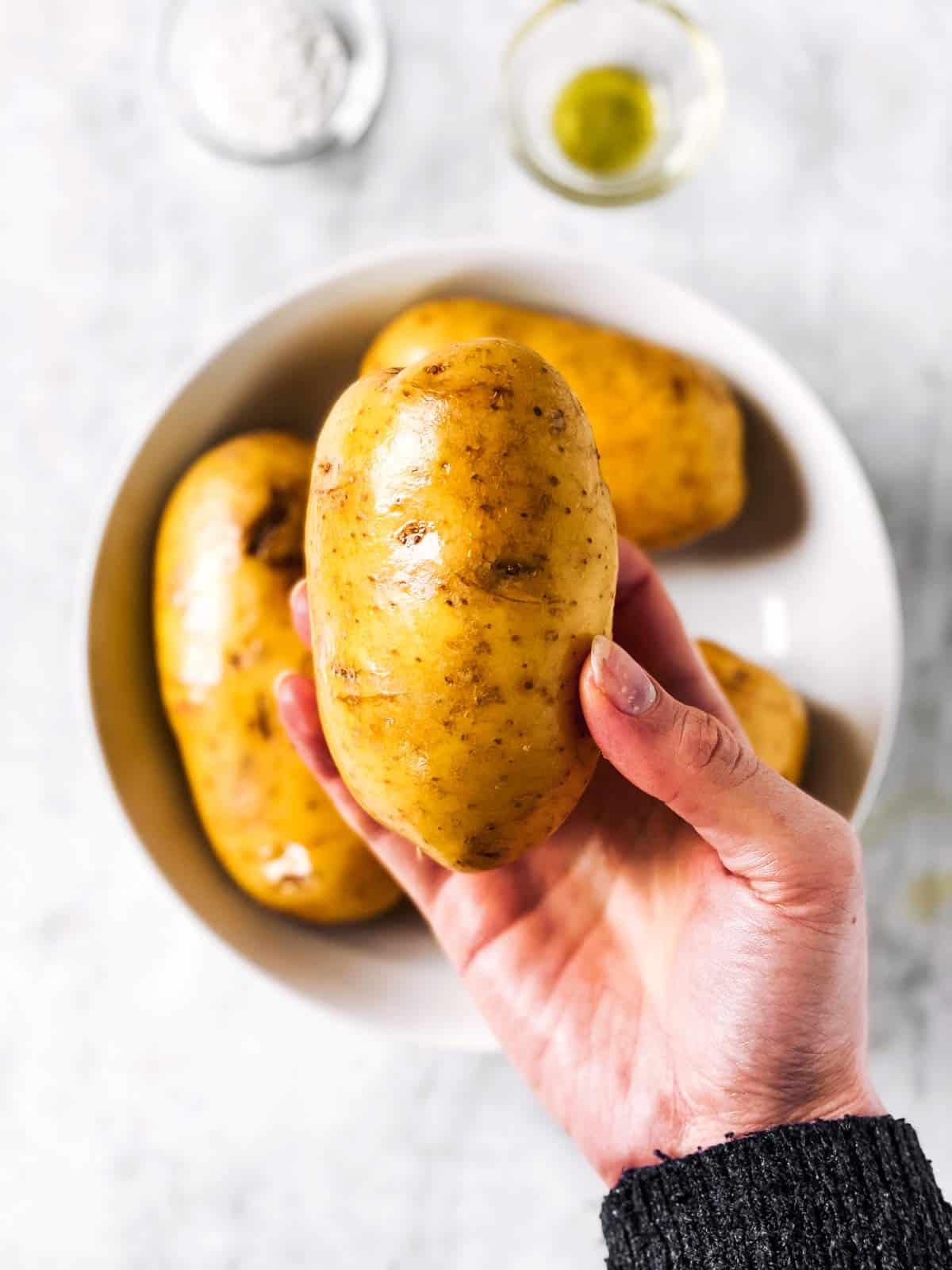 female hand holding an oil russet potato