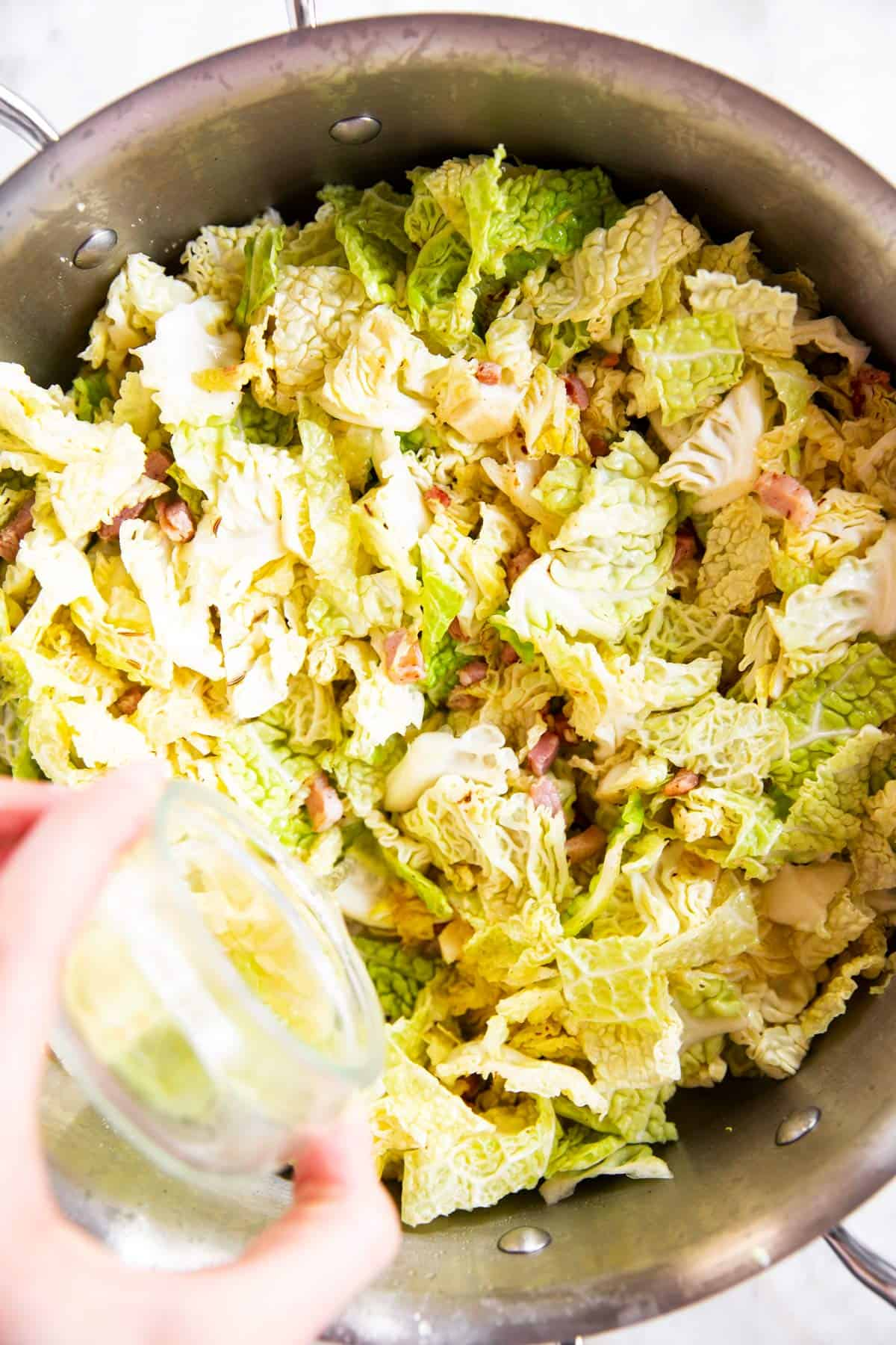 female hand pouring water into cabbage in skillet