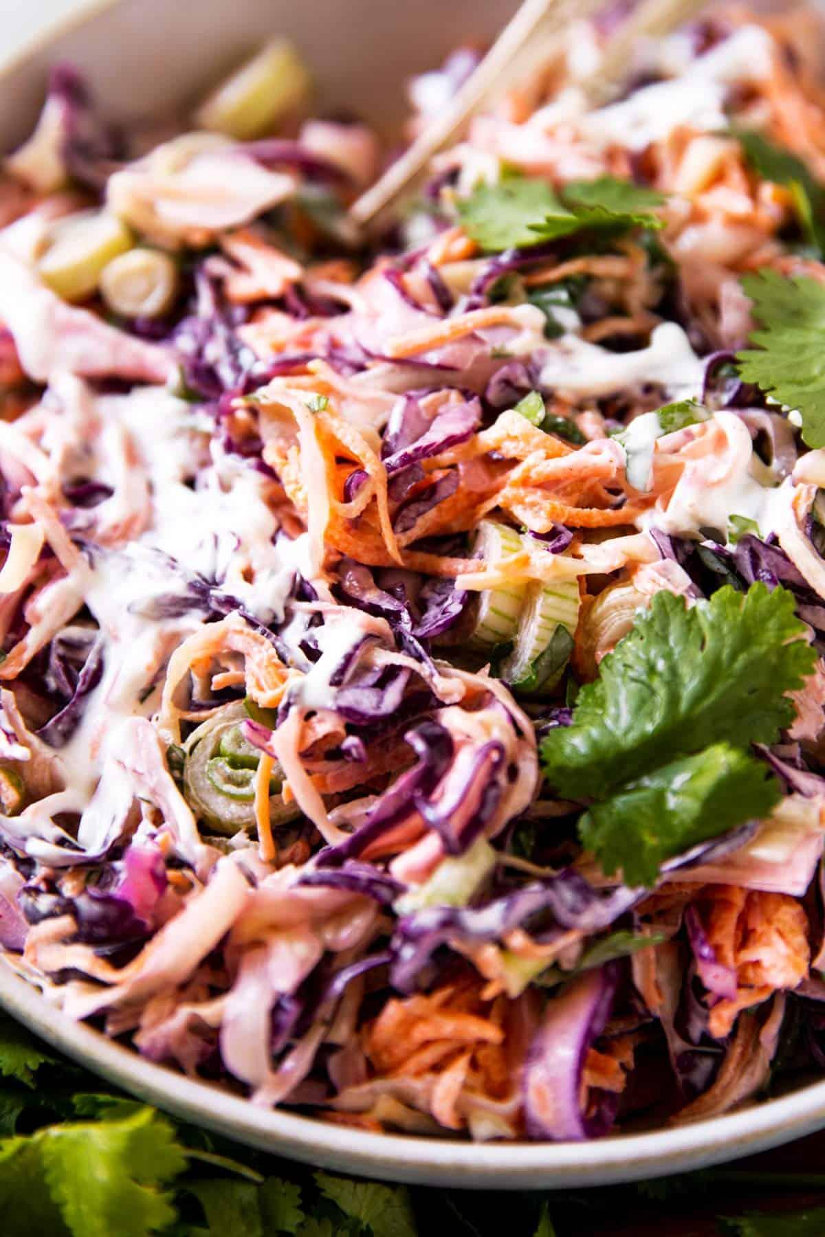 close up photo of cilantro lime slaw