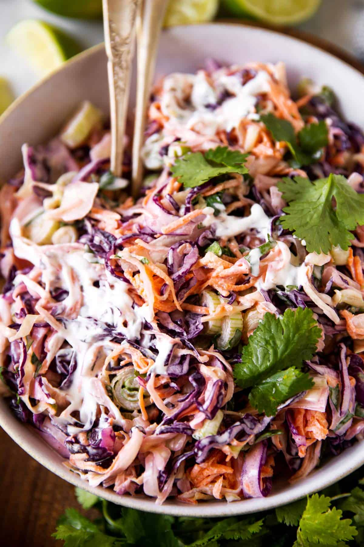 frontal view of a white bowl filled with cilantro lime slaw