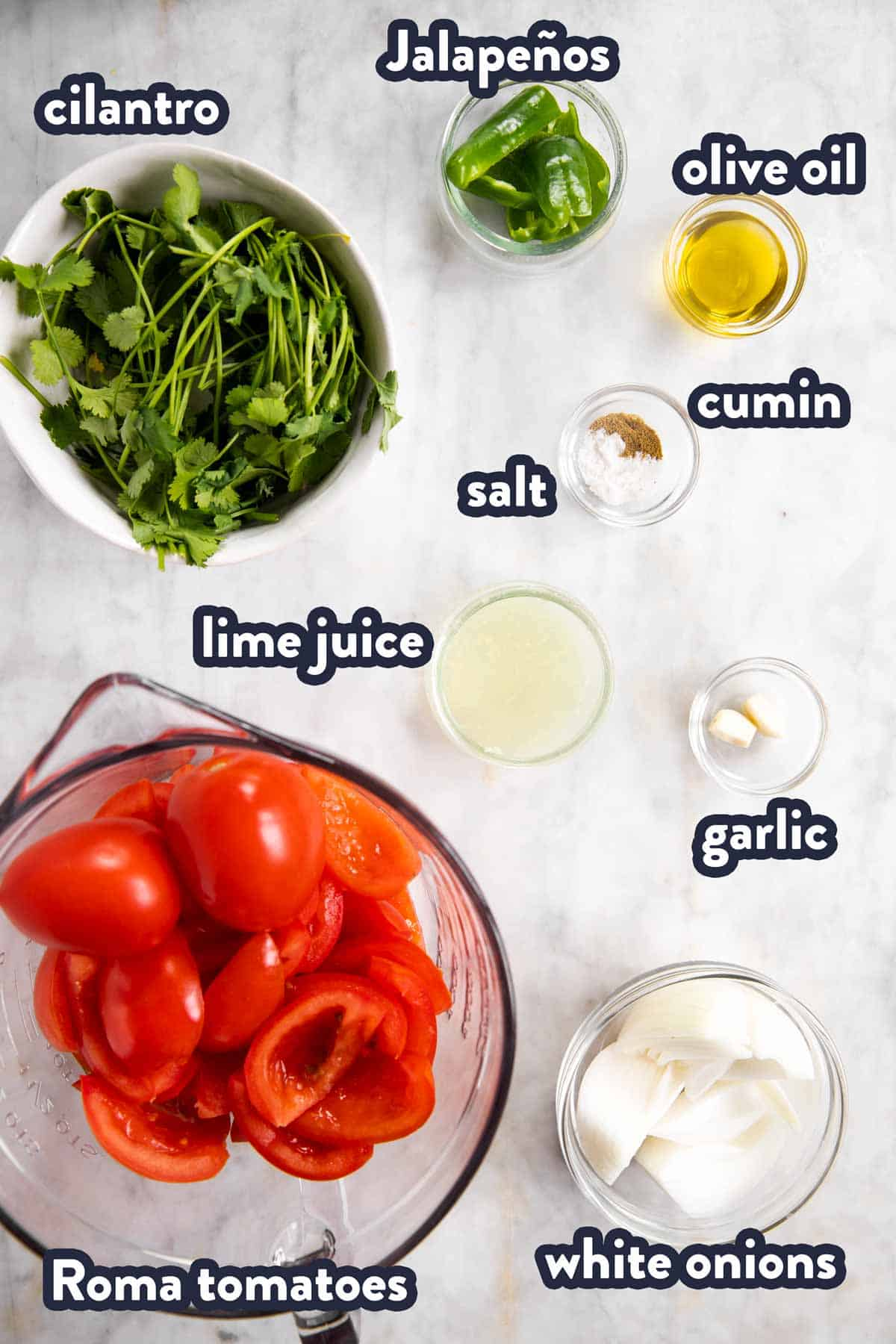 ingredients for fresh salsa with text labels
