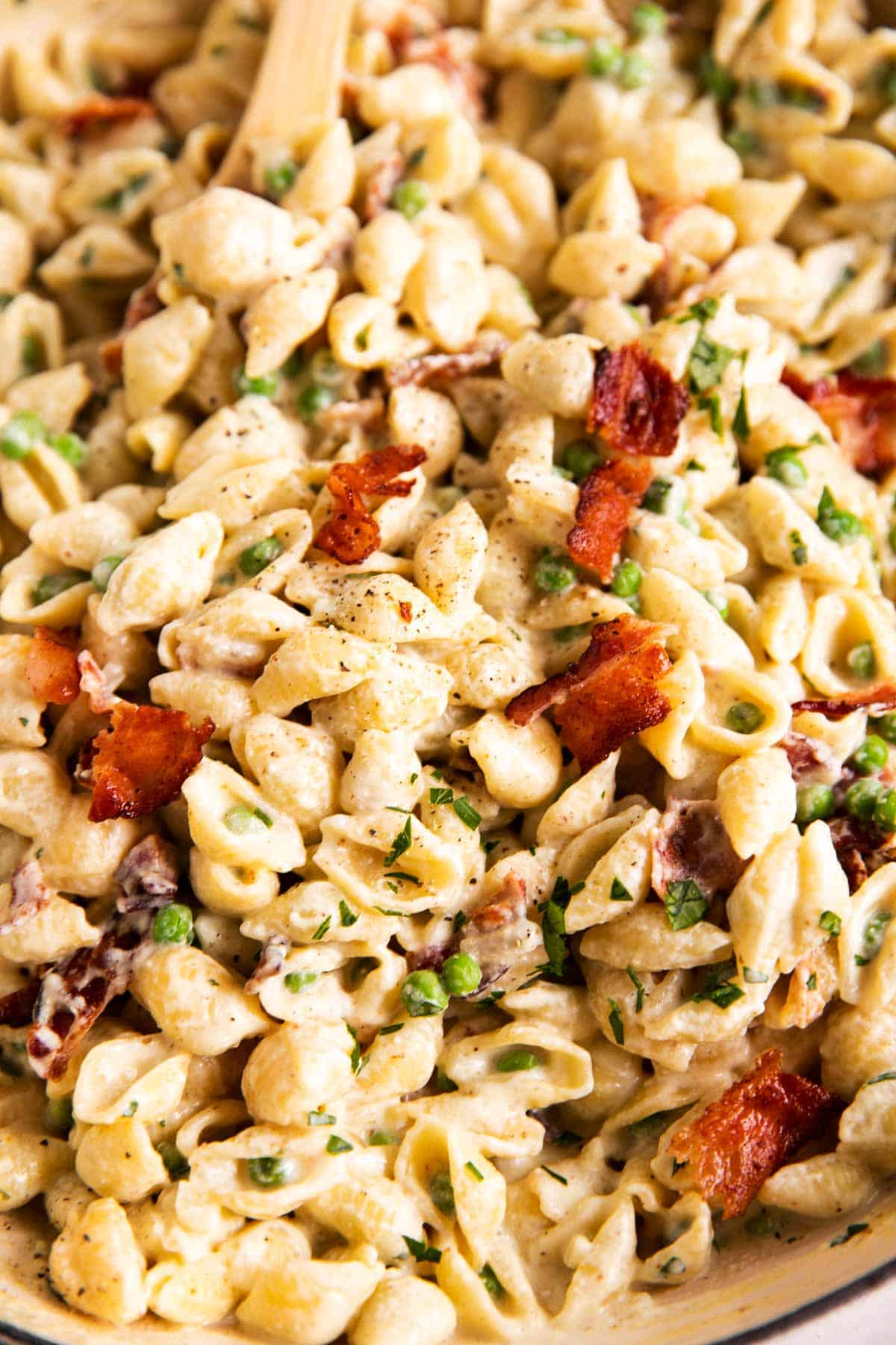 close up photo of pea and bacon pasta