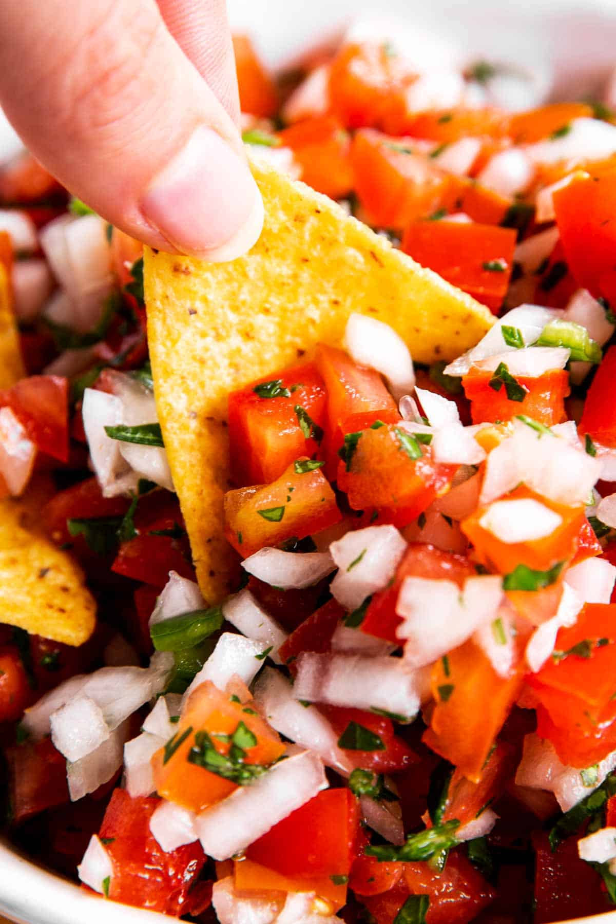 female hand scooping pico de Gallo with a corn chip