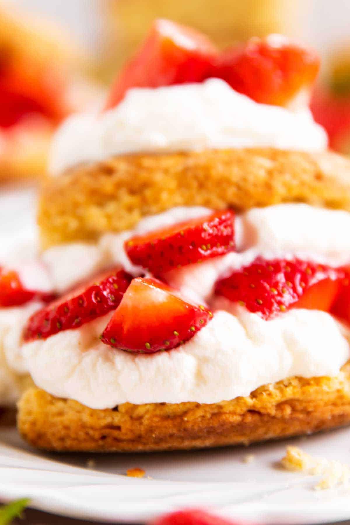 close up photo of strawberry shortcake