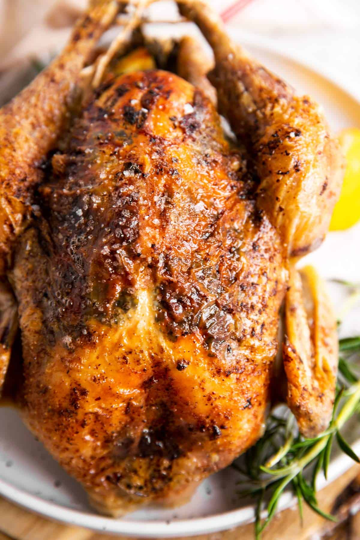 close up photo of a whole roasted chicken